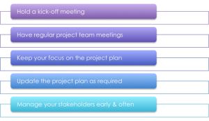 Manage the project and Stakeholder